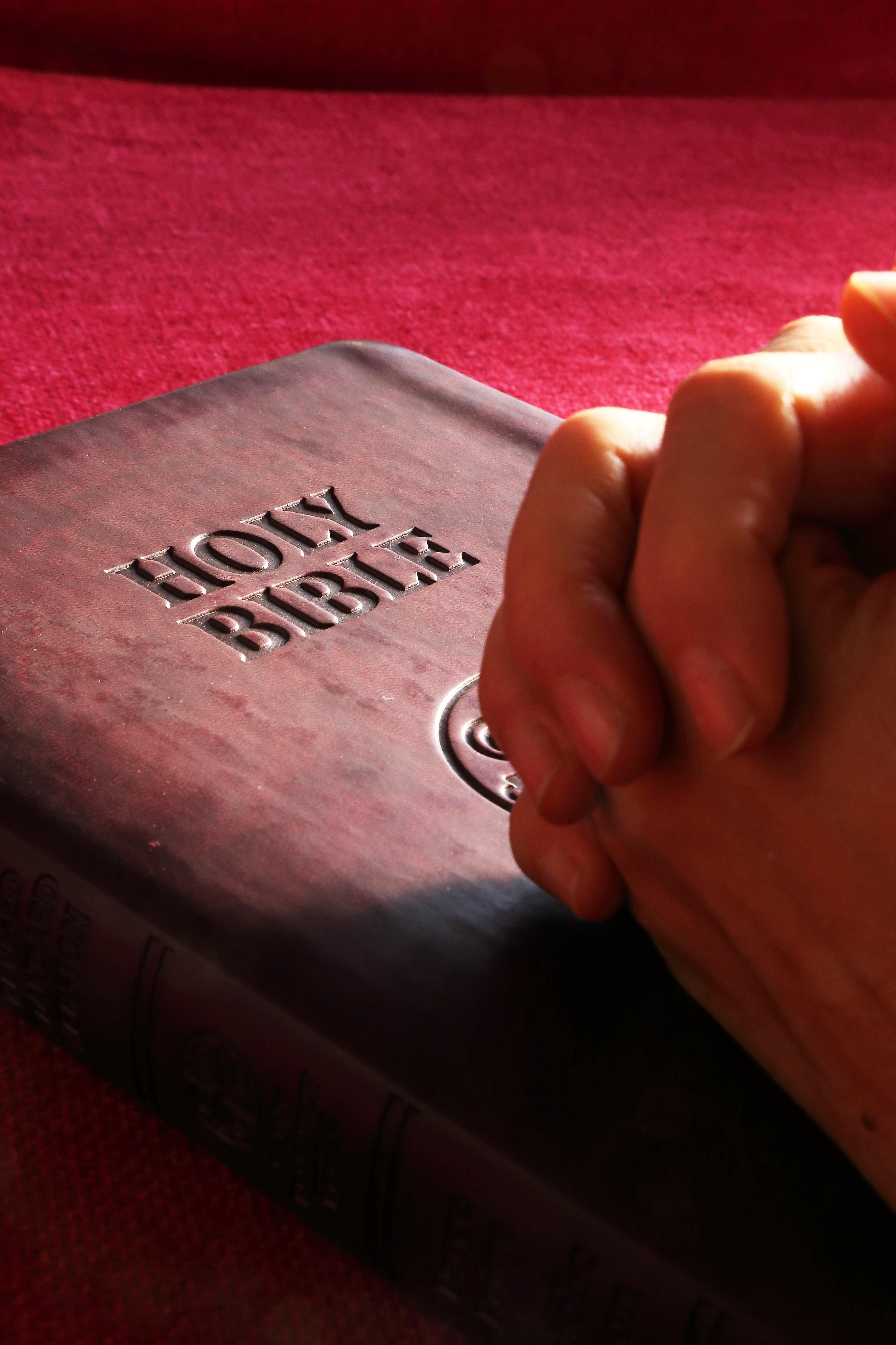 belief-bible-book-business-267559